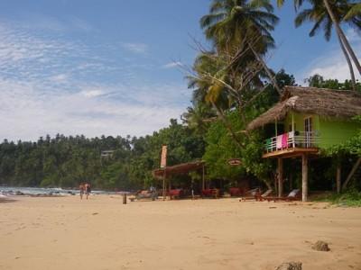 """Paradise in Mirrisa (Sri Lanka)"" by AFROgliuck"